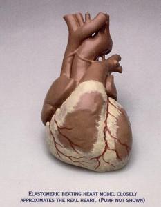 Heart_Elastomeric_Model_01